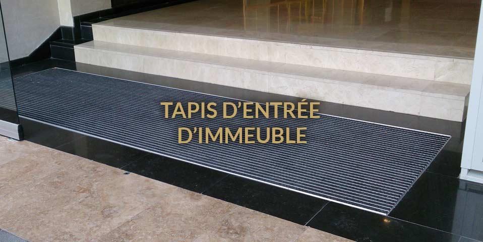Tapis entr e immeuble for Tapis entree exterieur
